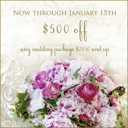 Jan10 bridaloffer copy